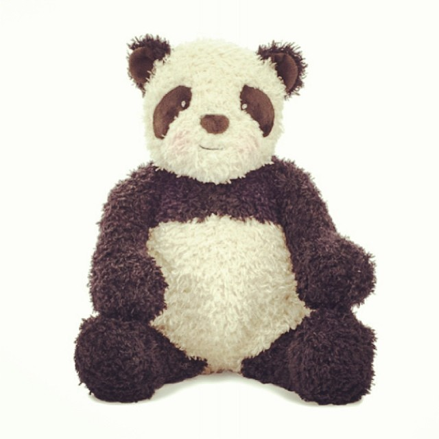 BBTB Press 01-23-2014 Bao Bao Panda Smithsonian Zoo 2
